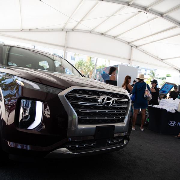 Hyundai Air & Sea Show